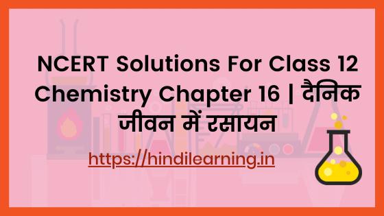 NCERT Solutions For Class 12 Chemistry Chapter 16 | दैनिक जीवन में रसायन