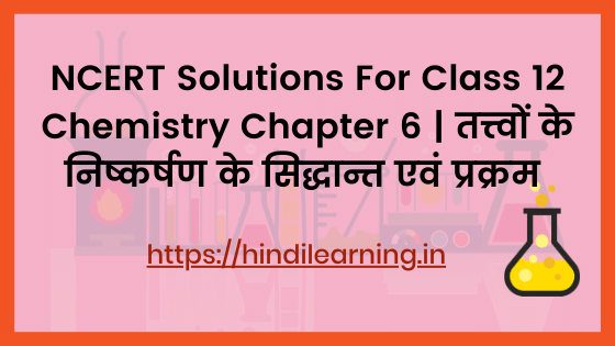 NCERT Solutions For Class 12 Chemistry Chapter 6 | तत्त्वों के निष्कर्षण के सिद्धान्त एवं प्रक्रम