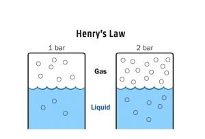 Henry Law