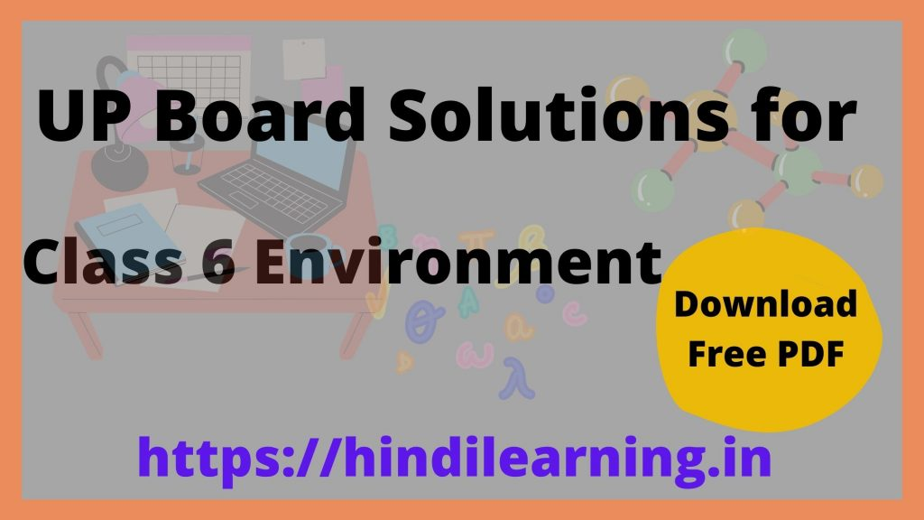 UP Board Solutions for Class 6 Environment